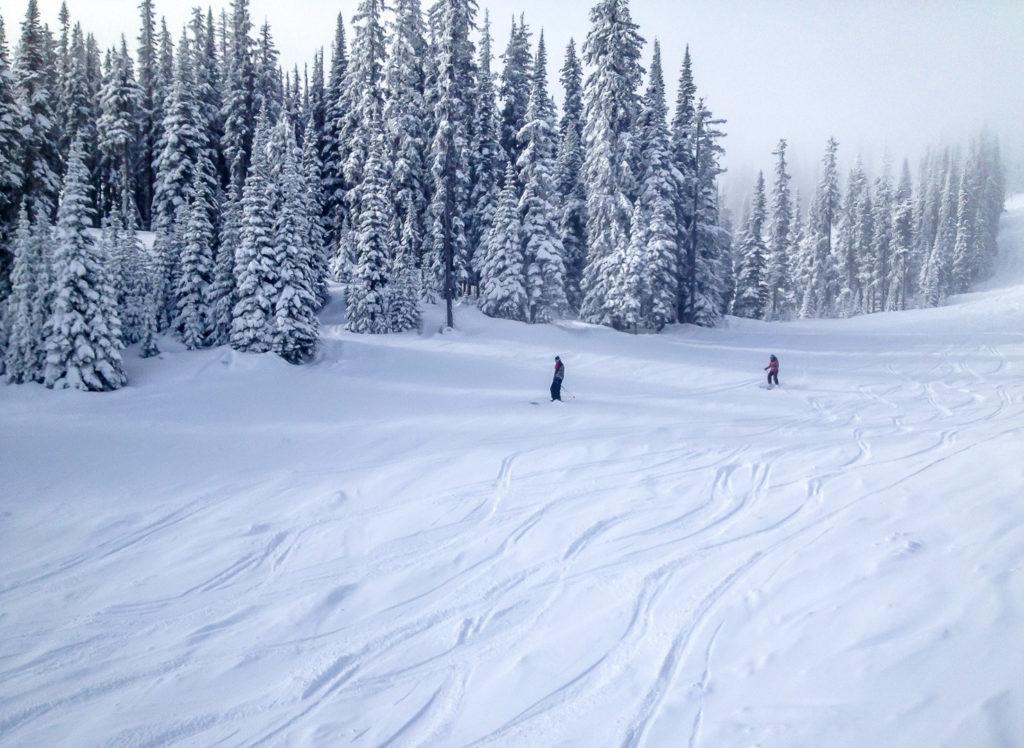 Roy Horton, Canada, skiiing